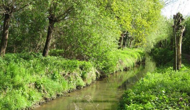 Integraal waterproject voor de Maalbeek