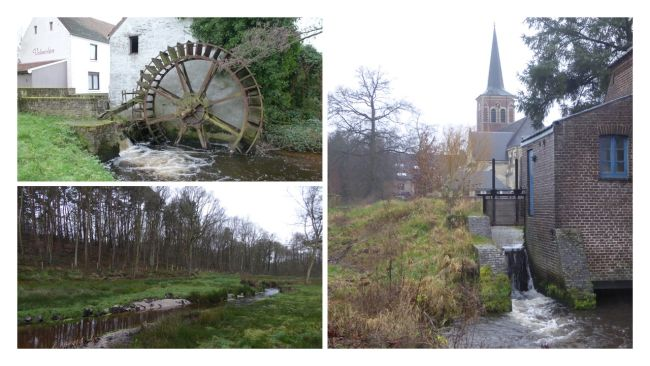 Bosbeek - Witbeek (collage)