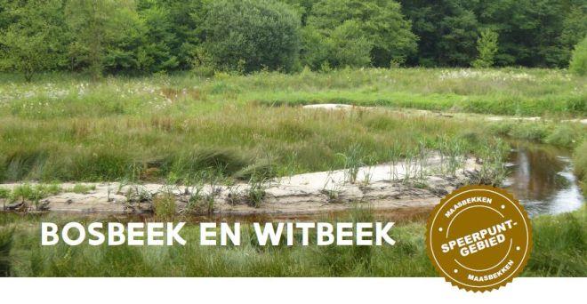 Speerpuntgebied Bosbeek
