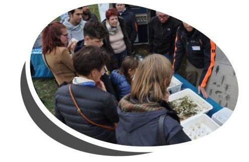 Campagne Fiere Rivieren (foto)